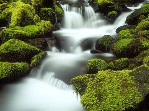 Desktop Wallpaper Hd 3d Full Screen Nature High Definition