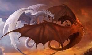 Drachen Schwarz Weiß : bild monddrache weiblich weiss vs drachenz hmen leicht gemacht oc wiki ~ Orissabook.com Haus und Dekorationen
