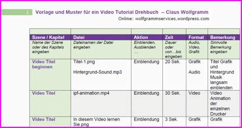drehbuch vorlage wolfgramm professional services