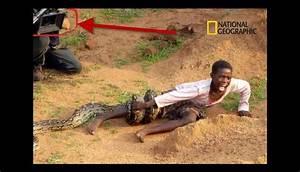 Diez fotografías curiosas que muestran situaciones ...
