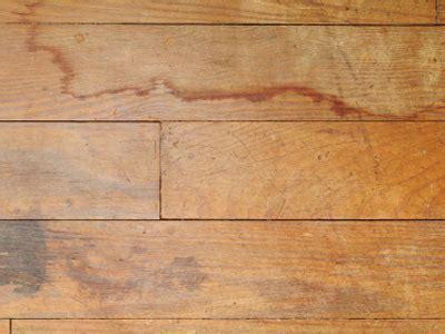 Repairing laminate flooring that got wet   Best Laminate