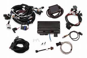 Ls1  Ls6 24x  1x Mpfi Kit With Terminator X Or Teminator X
