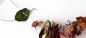 Aus Blättern Basteln : herbstfreuden basteln mit bl ttern und zapfen ~ Lizthompson.info Haus und Dekorationen