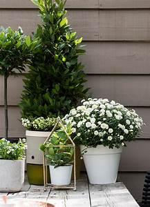 schone ideen fur eure herbstdeko auf terrasse und balkon With französischer balkon mit deko tisch garten