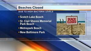 Several metro Detroit beaches closed due to high bacteria ...