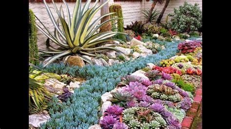 ideas de como decorar  jardin  piedras  plantas
