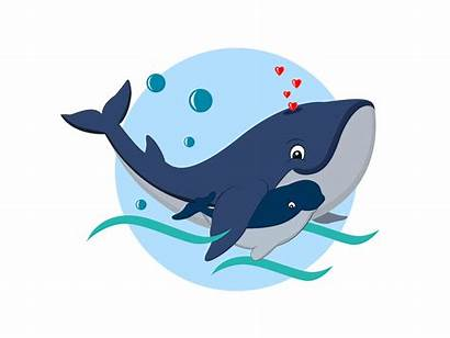 Whale Illustration Dribbble Flat