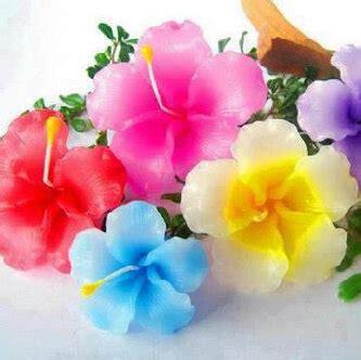 kumpulan gambar bunga warna warni kumpulan gambar gambar