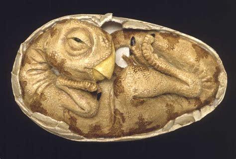 See Fossilized Dinosaur Eggs, Babies