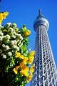 【日本,東京】東京晴空塔TOKYO SKYTREE 四周年生日快樂;東京地標不是要不要去的問題,而是要挑甚麼時候去 ...