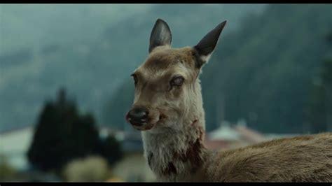 deer oh