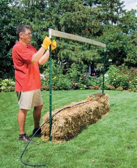 straw bale gardening fertilizer how do straw bale gardens work quarto homes