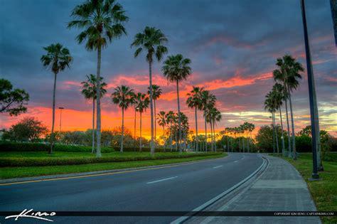 palm gardens sunset gardens mall