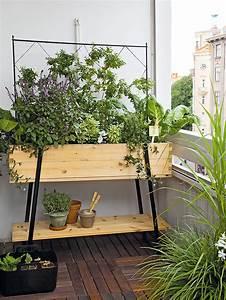 Gemüse Auf Dem Balkon : balkon bepflanzung perfect balkon bepflanzung weie ~ Lizthompson.info Haus und Dekorationen
