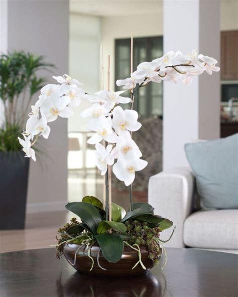 comment entretenir une orchidee en pot 28 images comment garder une orchidee en pot sedgu