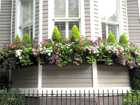 jll design window box ideas  garden inspirations