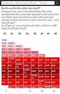 Bra Size Chart Bra Size Charts Size Chart Bra Sizes