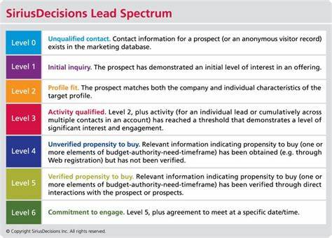 Leads A Defined Marketing Strategy_