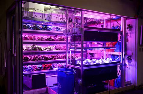 cuisine high tech the high tech farms where our future food will grow in