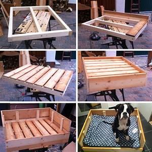 Schaukelpferd Aus Holz Zum Selber Bauen