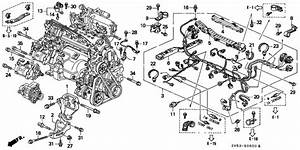 Honda Accord Ex Engine Diagram Torzone Org  Honda  Auto Wiring Diagram