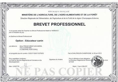 3 bureau des diplomes diplôme de niveau iv