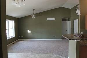 Awesome Olive Green Living Room Ideas With White Window