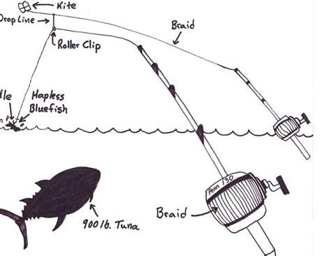 cape  kite fishing  giant tuna