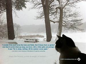 Spring Snow Quo... Spring And Snow Quotes