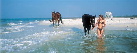 Cape San Blas Florida - Things to Do in Cape San Blas FL