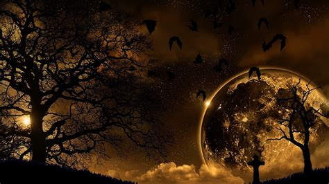 night nature hd wallpapers gallery