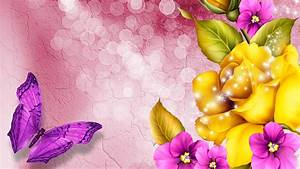 Beautiful Colorful Butterfly Pictures 8 Desktop Background ...