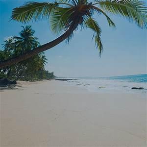 Location Maison Espagne Bord De Mer : vacances mer espagne 4856 locations vacances bord de mer ~ Dailycaller-alerts.com Idées de Décoration