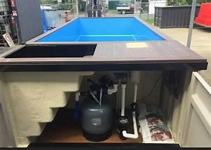 Pool Aus Container : swimming pools container kings thailand ~ Orissabook.com Haus und Dekorationen