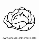 Lettuce Coloring Lechuga Colorear Dibujo Colorare Disegni Ultra Lattuga Ultracoloringpages sketch template