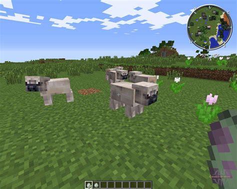 pug life pour minecraft