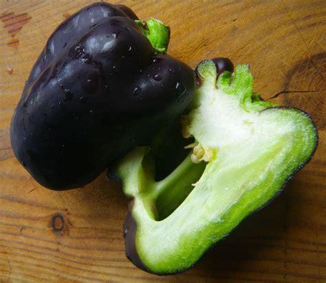 cuisiner les poivrons rouges les poivrons blancs et violets la ronde des délices