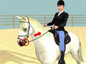 How To Trot A Horse  8 Steps  With Pictures