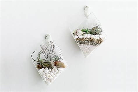 Product Of The Week Wall Hanging Glass Planters product of the week wall hanging glass planters