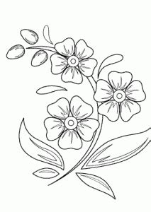 flowers coloring pages  kids printable