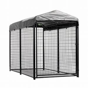 shop akc 8 ft x 4 ft x 6 ft outdoor dog kennel With outside dog kennels lowes
