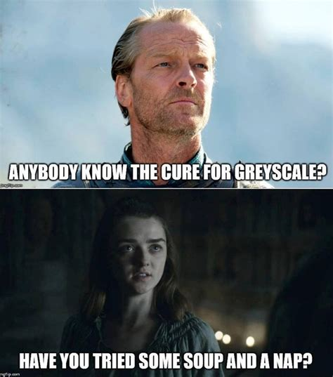 Memes Game Of Thrones - 1233 best images about game of thrones memes on pinterest ned stark game of thrones funny and