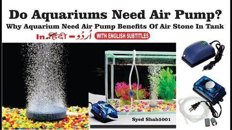 air need oxygen pump bubbles supply pumps aquarium