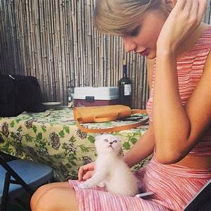 Taylor Swift introduces adorable new kitten Olivia Benson ...