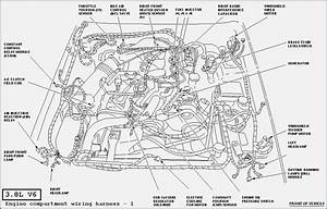 2000 mustang wiring diagram vivresavillecom With block wiring 66 phone punch down block wiring cross connect 110 block