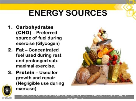 Ndd30503 Energy System And Exercise