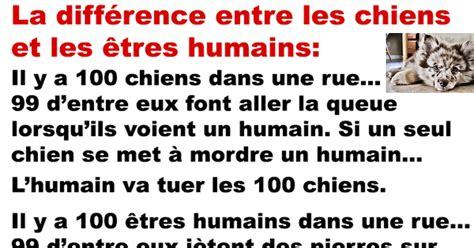 la diff 233 rence entre les chiens et les 234 tres humains