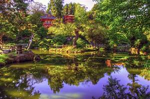 Japanese Garden 4k Ultra HD Wallpaper and Background Image ...