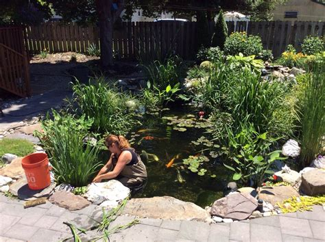 Pond Aquascape by Pond Maintenance Contractor Services South Jersey Camden