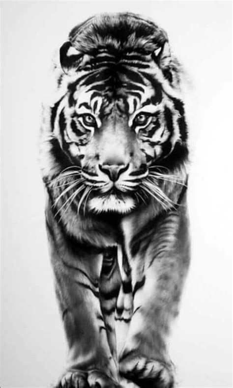 Pin by Tony Toranza on tigers | Tiger tattoo, Tiger tattoo design, Tiger drawing